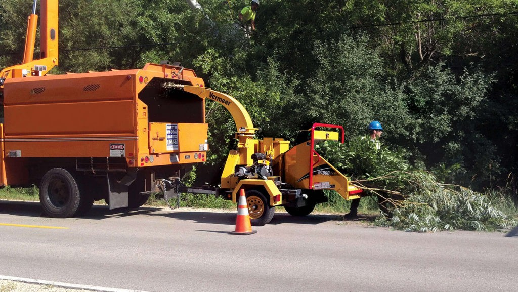 Commercial Tree Services-Coronado CA Tree Trimming and Stump Grinding Services-We Offer Tree Trimming Services, Tree Removal, Tree Pruning, Tree Cutting, Residential and Commercial Tree Trimming Services, Storm Damage, Emergency Tree Removal, Land Clearing, Tree Companies, Tree Care Service, Stump Grinding, and we're the Best Tree Trimming Company Near You Guaranteed!