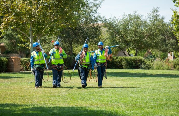 Mission Hills-Coronado CA Tree Trimming and Stump Grinding Services-We Offer Tree Trimming Services, Tree Removal, Tree Pruning, Tree Cutting, Residential and Commercial Tree Trimming Services, Storm Damage, Emergency Tree Removal, Land Clearing, Tree Companies, Tree Care Service, Stump Grinding, and we're the Best Tree Trimming Company Near You Guaranteed!